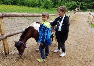 Mišin-dol-otroški-tabori-s-konji-8
